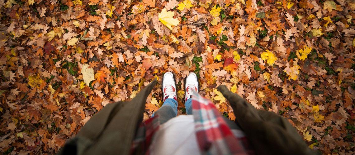 Mit tollen Angeboten Preisen in den Herbstputz starten